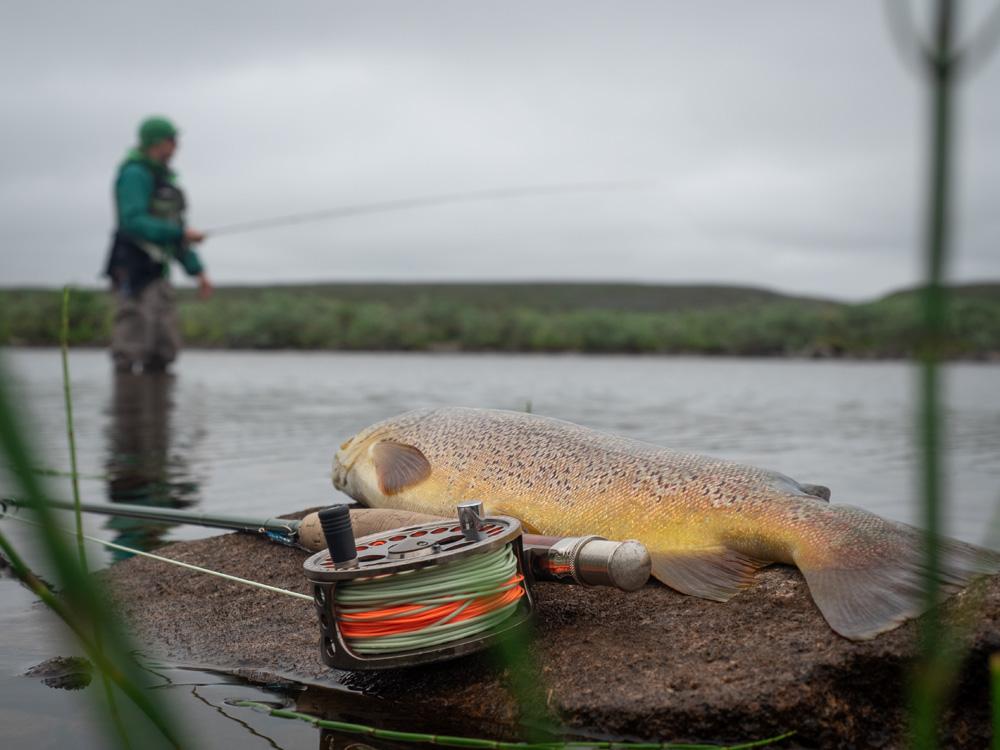 Taimenen perhokalastusta Finnmarkissa
